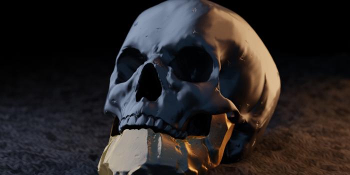 czaszka1_1gotowe